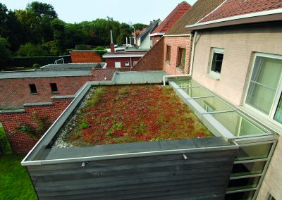 rc_green_roof_extension_01
